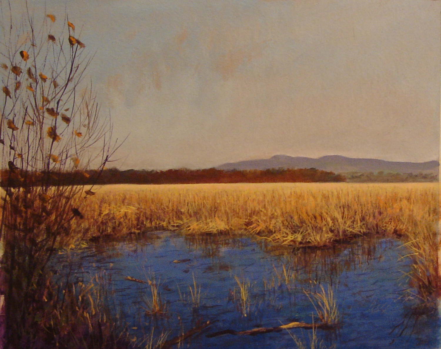 Tivoli Marsh on Hudson